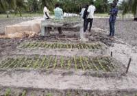 Bénin : dans la Vallée de l'Ouémé, au sud-est du pays, la Banque africaine de développement accompagne la productivité