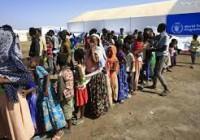 Le nombre de déplacés et de réfugiés dans le monde dépasse la barre des 80 millions (HCR)