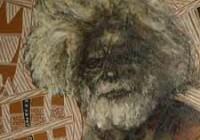 «Mémoires Vives. Une Histoire de l'Art Aborigène»