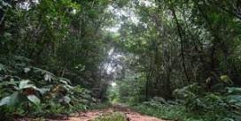 Réserves de biosphère : l'UNESCO approuve l'inscription de 25 nouveaux sites
